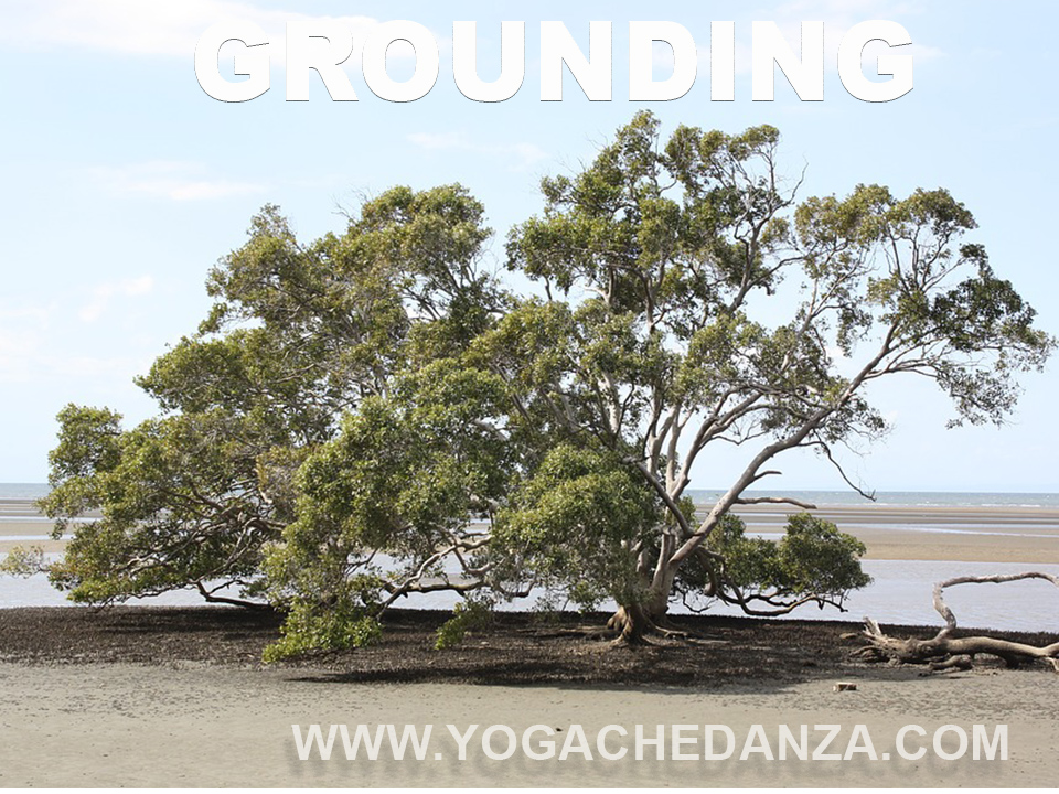 grounding nello yoga